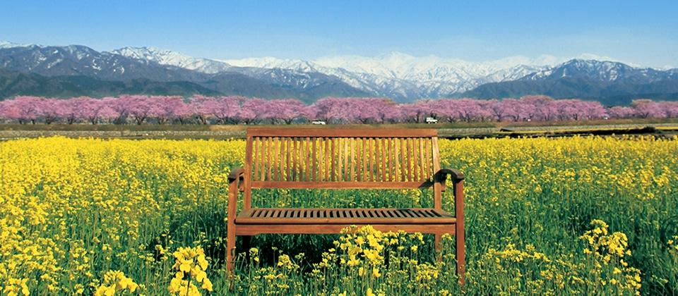 春の旅支度